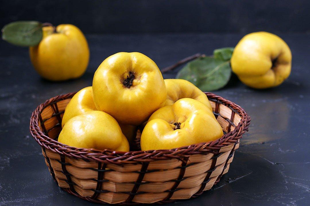 como hacer membrillo membrillo fruta membrillo thermomix dulce de membrillo thermomix