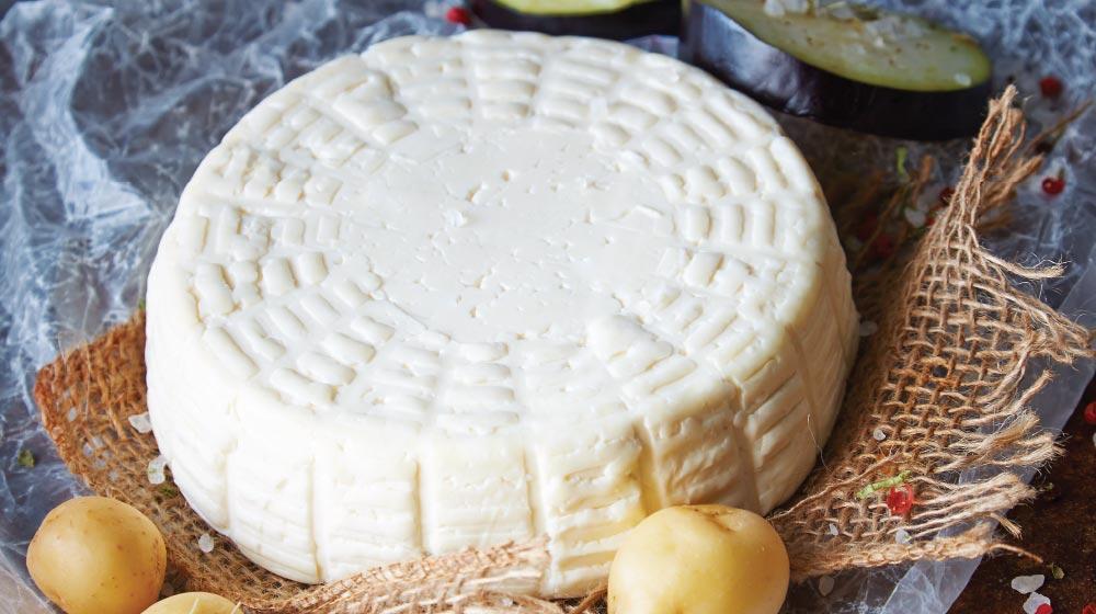 queso panela